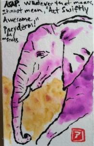 ASAP elephant