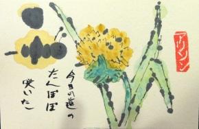 Dandelion Santoku Poem