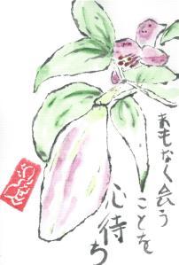 GardenLily.Bud.2013-06-01