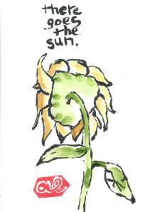 Sunflower.ThereGoesTheSun.08-25-13