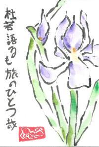 Iris.Basho.1.2013-01-10